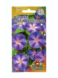 Семена Ипомея Леди в фиолетовом