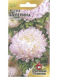 Семена Астра Балерина