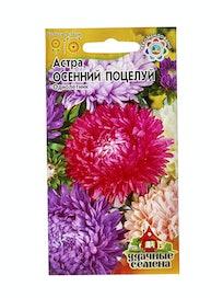 Семена Астра Осенний поцелуй, смесь, 0,3 г
