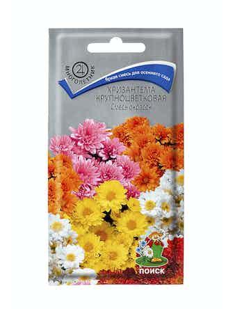 Семена Хризантема крупноцветная, смесь окрасок