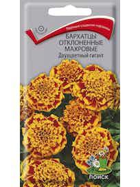 Семена Бархатцы отклоненные Двухцветный гигант