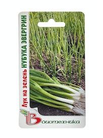 Семена Лук на зелень Нубука Эвергрин