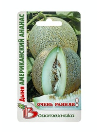 Семена Дыня Американский ананас