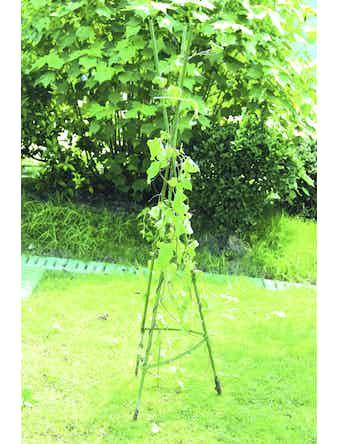 Опора для растений Green Apple, 1,5 м