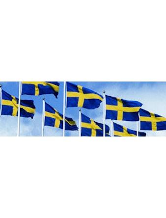 Flagga Flagmore Sverige 300cm 76015