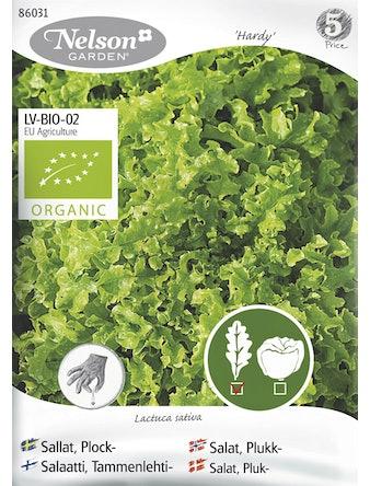 Frö Sallat Plock Organic