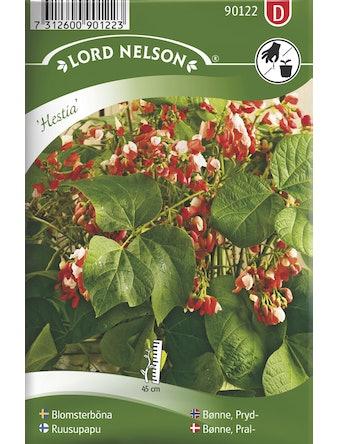 Blomsterböna Hestia Låg(Pgd)