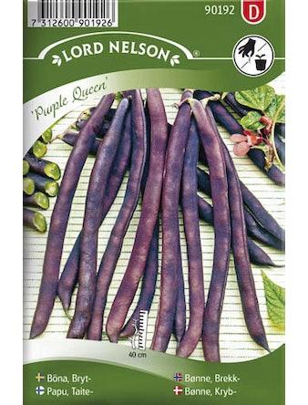 Böna Lord Nelson Bryt-Purple Queen