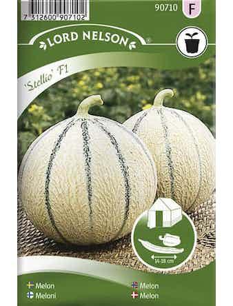 Melon Lord Nelson Stellio F1