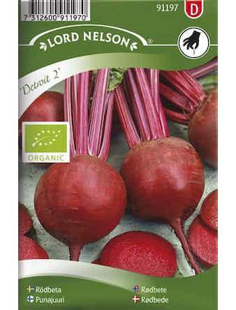Rödbeta Lord Nelson Detroit 2 Rund Organic