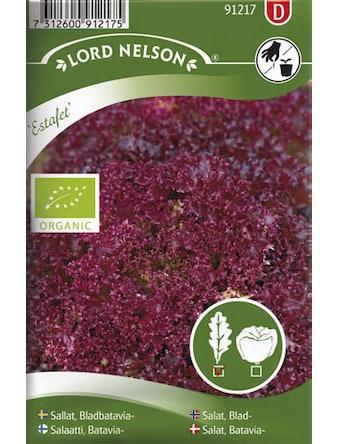 Sallat Lord Nelson Bladbatavia Estafet Organic