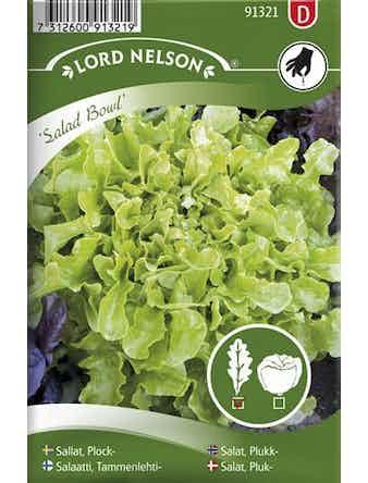 Sallat Plock Salad Bowl Grön