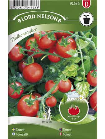 Tomat Lord Nelson Busk-Balkonzauber