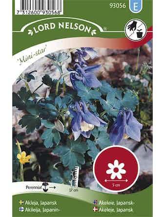 Akleja Lord Nelson Japansk Mini-Star Blå