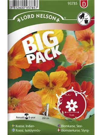 Krasse Indian Blandade Färger Big Pack