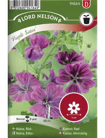 Malva Lord Nelson Röd-Purple Satin