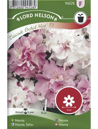Petunia Lord Nelson Cascade Orchid Mist Dubbel