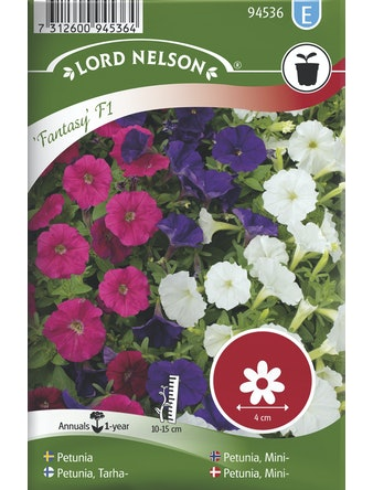 Petunia Lord Nelson Fantasy F1 Mini