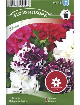 Petunia Lord Nelson Glorious F1 Dubbel