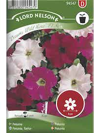 TARHAPETUNIA SIEMEN DREAMS WILD ROSE MIX