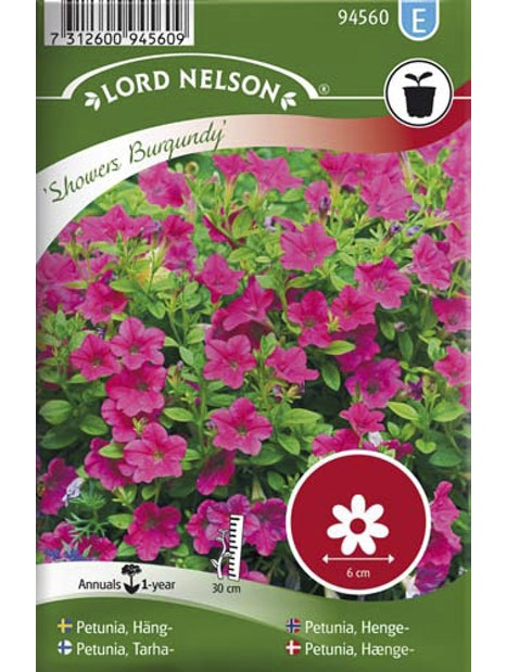 TARHAPETUNIA SIEMEN SHOWERS BURGUNDY