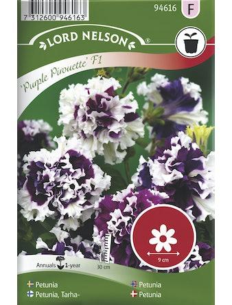 Petunia Lord Nelson Purple Pir F1