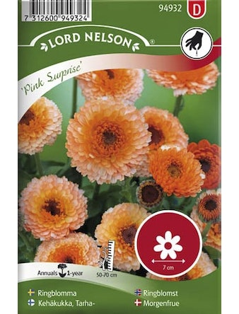 Ringblomma Lord Nelson Pink Surprise