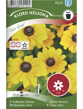 Rudbeckia Lord Nelson Sommar Toto Gold Låg