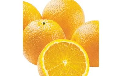 Jaffa Appelsiini kg