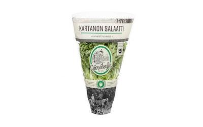 Järvikylä Kartanon salaatti