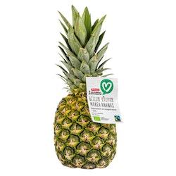 Pirkka Luomu Reilun kaupan ananas