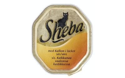 Sheba Speciale 100g kalkkuna kastike rasia