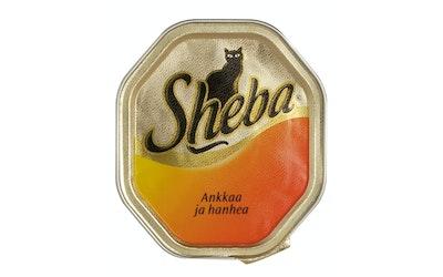 Sheba 100g ankka-hanhi patee rasia
