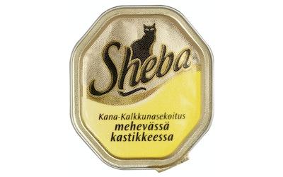 Sheba Selection 100g kana-kalkkuna kastike rasia