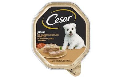 Cesar Junior 150g kalkkunaa vasikkaa