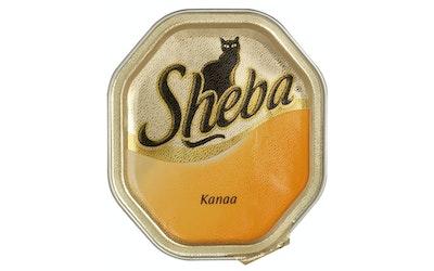 Sheba Classic 100g kana patee rasia