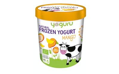 Yoguru 500ml/255g Mango Frozen yogurt