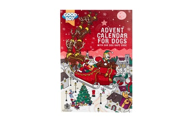 GoodBoy suklaajoulukalenteri koirille 72g