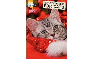 GoodGirl kissan joulukalenteri 72g