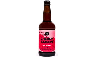 Little Valley Cherry Saison 4,5% 0,5l