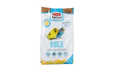 BF Festival Exclusive 1kg Budgie