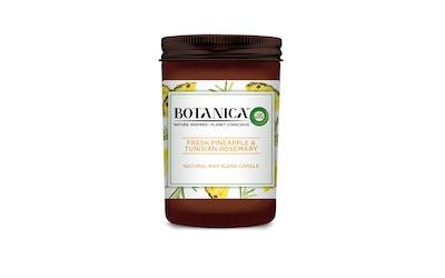 Airwick Botanica tuoksukynttilä Pineapple 205g