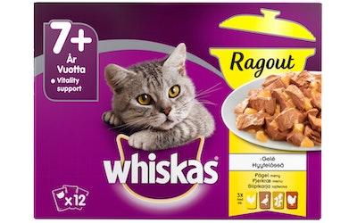 Whiskas 7+ ragout 12x85g siipikarja hyytelössä