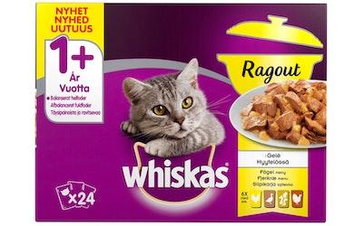 Whiskas 1+ ragout 24x85g siipikarja hyytelössä