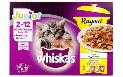 Whiskas Ragout Junior 12x85g siipikarja