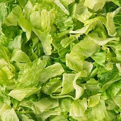 Menu cosmopolitan salaattisuikale 500g