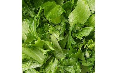 Menu Jääsalaatti-salanova -rucola salaattisekoitus 500g