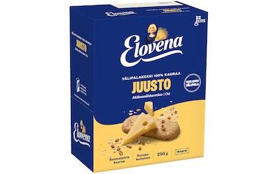 Elovena välipalakeksi 10x25g juusto