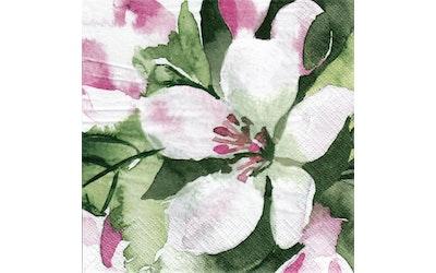 Pentik liina 24cm 20kpl Omenankukka vaaleanpunainen