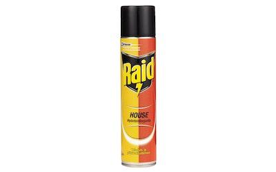 Raid House hyönteistorjunta 300ml